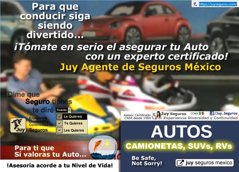 Asegura tu Automóvil con Juy Seguros