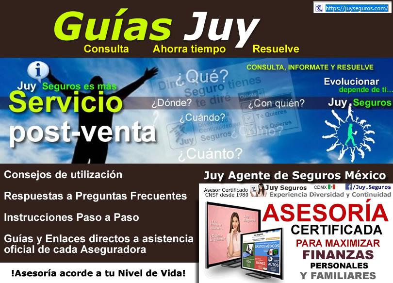 Guias JUY