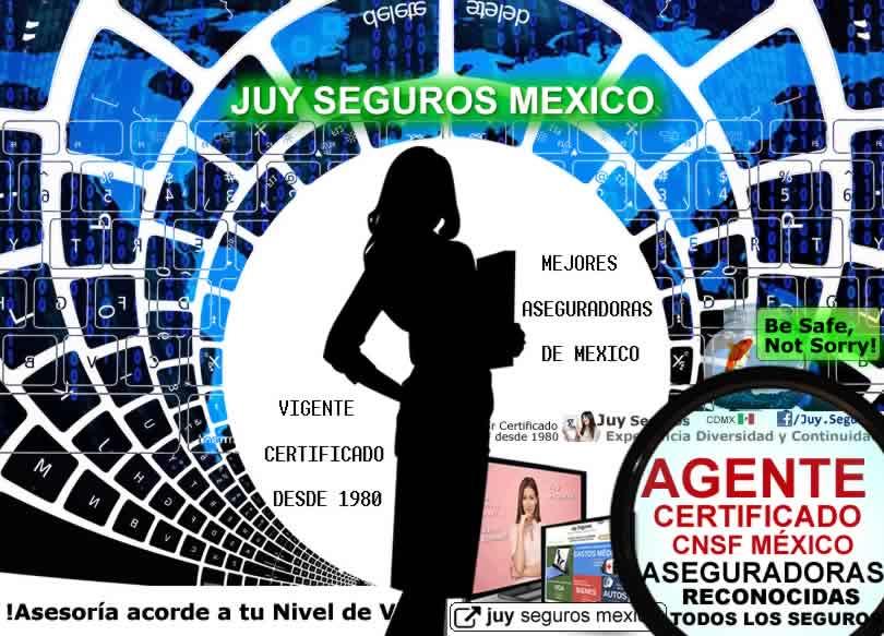 Juy Agente de Seguros Certificado CNSF Vigente Cedula Definitiva para Todos tus Seguros en Mexico