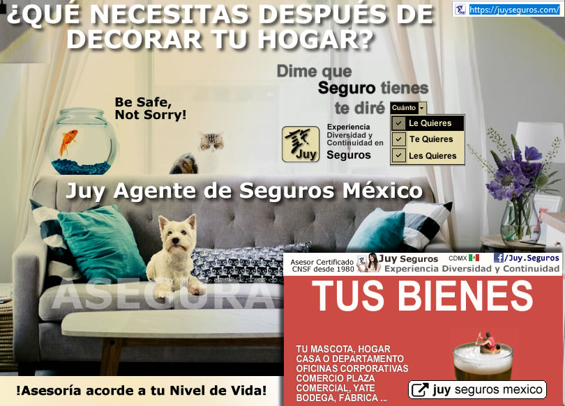 Después de decorar, asegura tu Hogar Casa Departamento y Mascota, hazlo por tu Perro también!