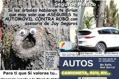 Las cifras de Robo de Autos en México son alarmantes, Asegura tu Automóvil con asesoría de Juy Seguros