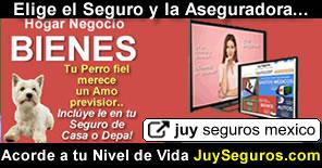 Asegura tus Bienes Inmuebles Hogar Casa Departamento Comercio con Asesoría experta de Juy Seguros México
