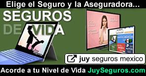 Contrata Seguros de Vida y Ahorro con Asesoría Juy Seguros México