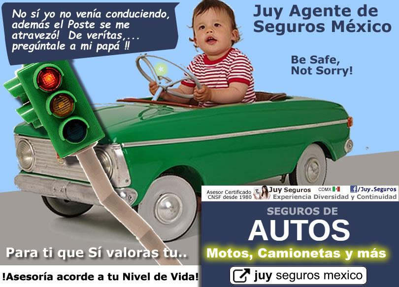 Quien es el conductor habitual Significado Juy Seguros de Autos en México
