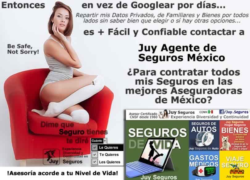 Juy Seguros México Todos tus Seguros de las Mejores Aseguradoras Facil Confiable