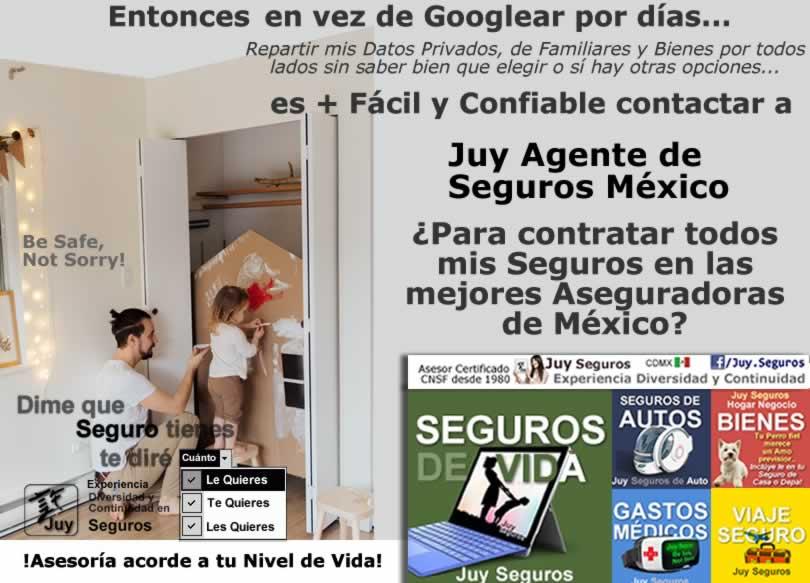 JUY SEGUROS MEXICO Todos tus Seguros en las Mejores Aseguradoras Facil y Confiable Asegura tu Hogar