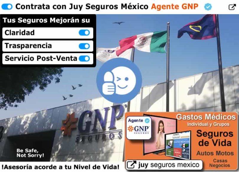 GNP Seguros Agente de auto vida y ahorro gastos medicos casa JUY SEGUROS MEXICO