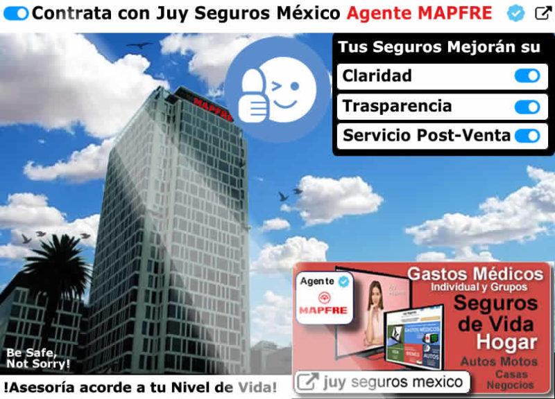 MAPFRE Agente de Seguros JUY SEGUROS Mejor Claridad Servicio Post-Venta TEPEYAC