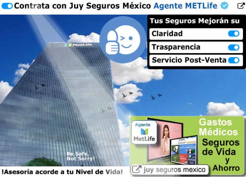 METLIFE AGENTE JUY SEGUROS MEXICO de Vida y Ahorro Gastos Medicos Mayores
