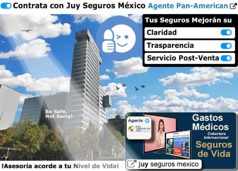 PAN-AMERICAN-Life Agente Palig Juy Seguros Mexico Cotizar Contratar Polizas