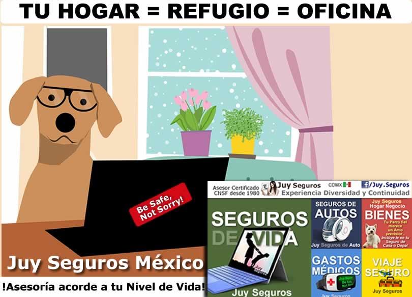 Tu Hogar es tu Refugio, tu oficina y centro rehabilitación covid