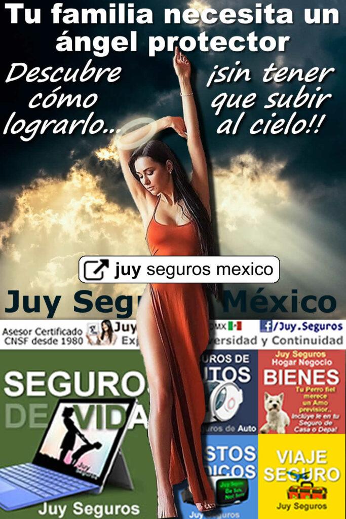 Tú eres el ángel protector familiar Seguro de Vida y Ahorro Gastos Médicos Juy Seguros México
