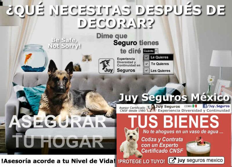 DECORA TU HOGAR CASA O DEPARTAMENTO Y ASEGURALO CON JUY SEGUROS MÉXICO